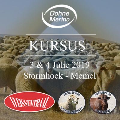 Dohne Merino Kursus - Stormhoek, Memel